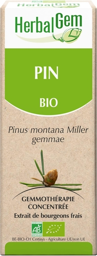 Herbalgem Pin Montagne Macérat 15ml | Articulations - Muscles - Os